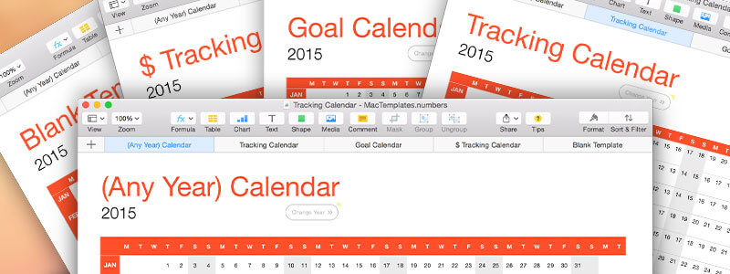 Any Year Tracking Calendar Template for Numbers