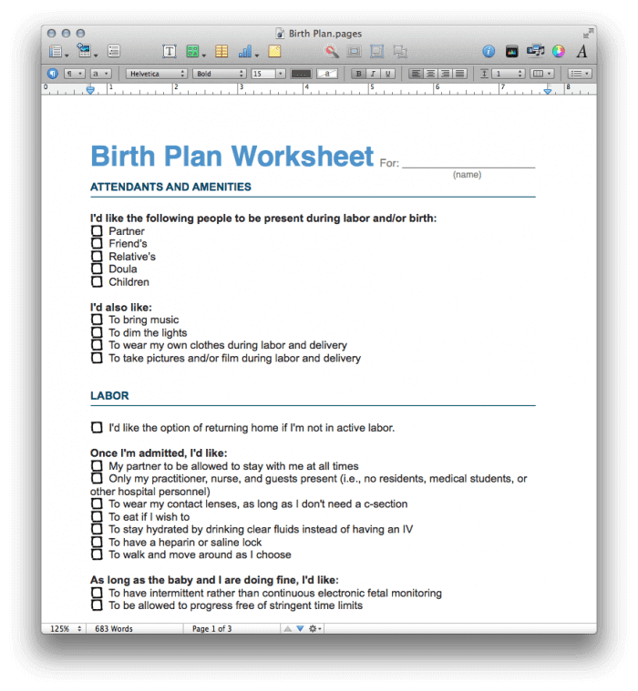 Birth Plan Template