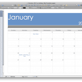2013 Pages Calendar with Holidays